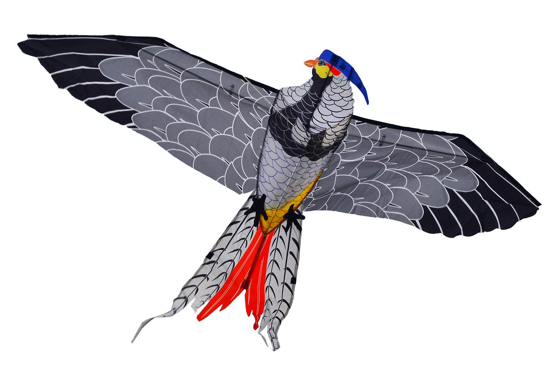 Фазан, воздушный змей [ZBK741]