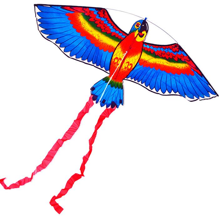 Попугай Розелла синий