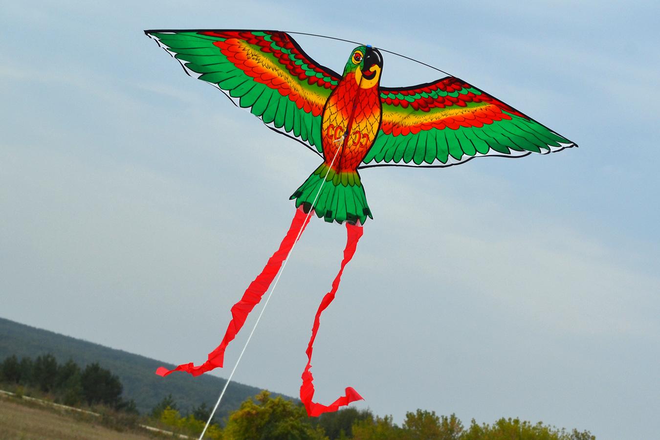 Попугай Розелла зеленый изображение 2