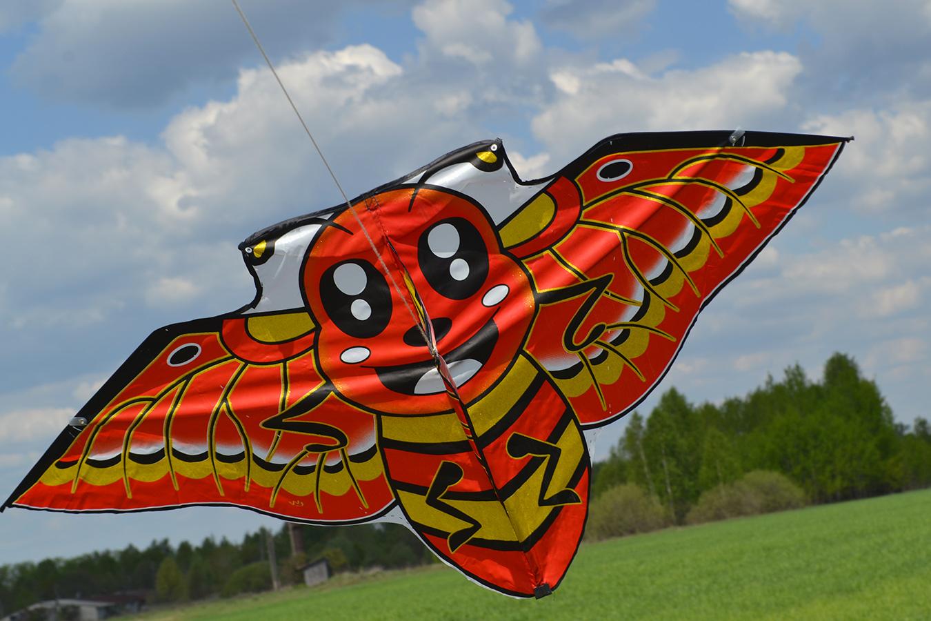 Японская пчела изображение 0