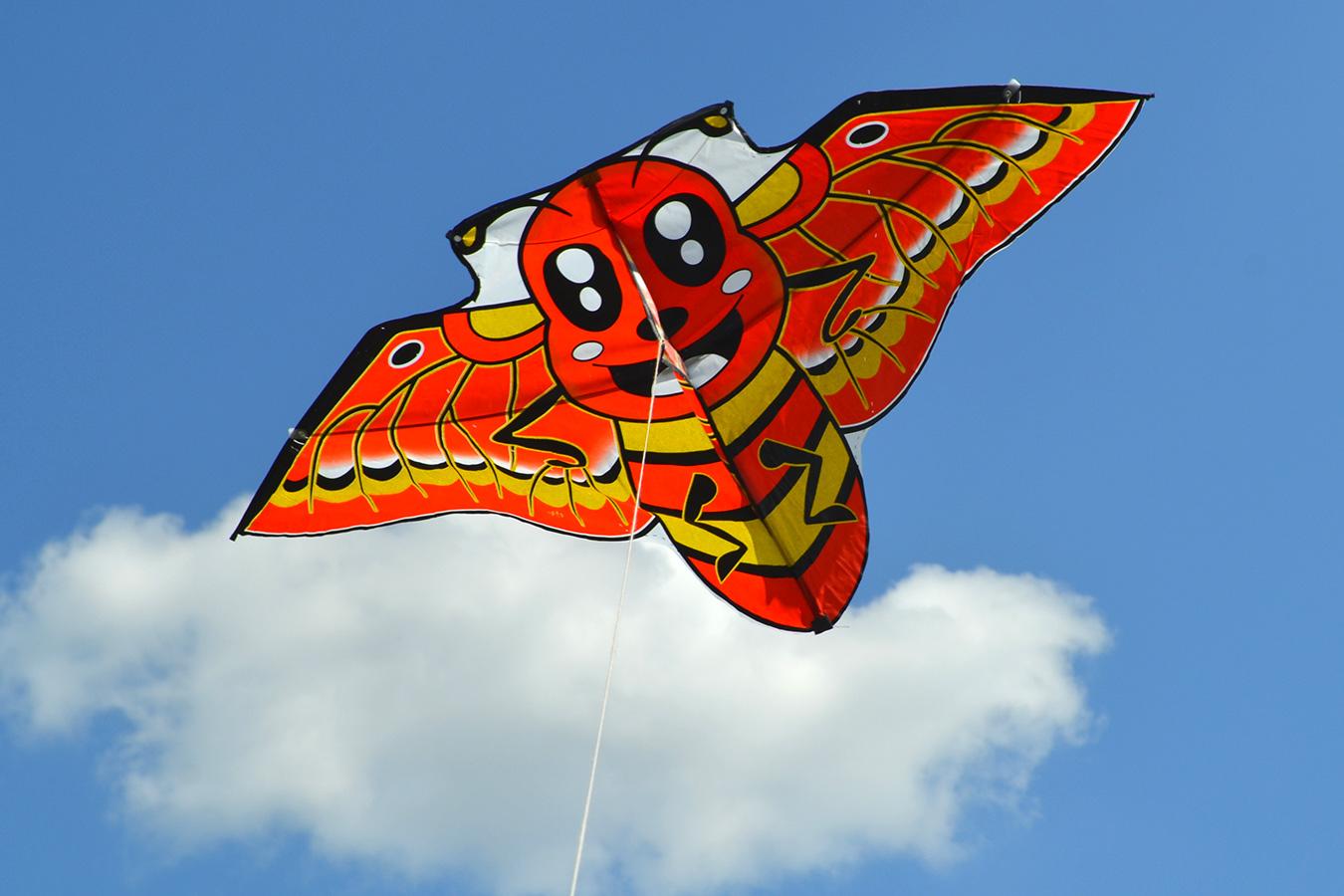 Японская пчела изображение 1