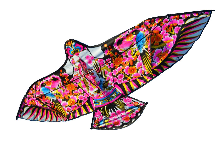 Птица весна, воздушный змей [ZVD502]