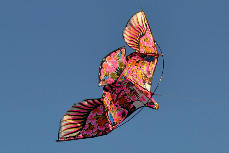 Птица весна изображение 1