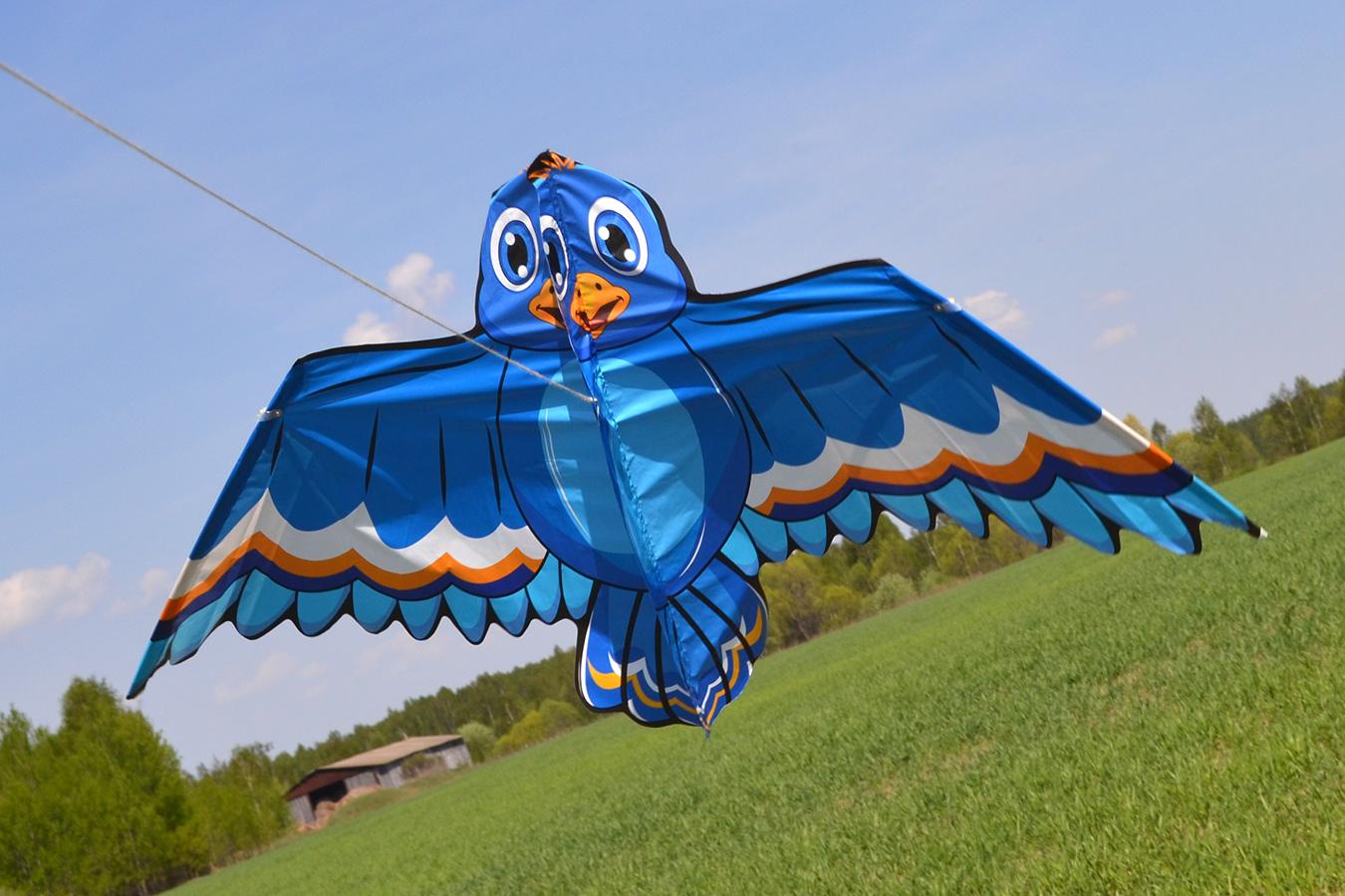 Синий воробей изображение 1