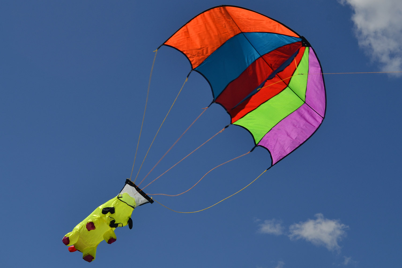 Веселый парашютист изображение 0