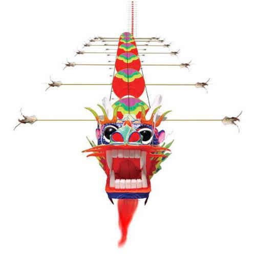 огромный китайский дракон 30 метров, воздушный змей [zbbcd30]