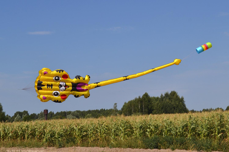 Бескаркасный воздушный змей Летающий тигренок, 6 метров от ФКайт