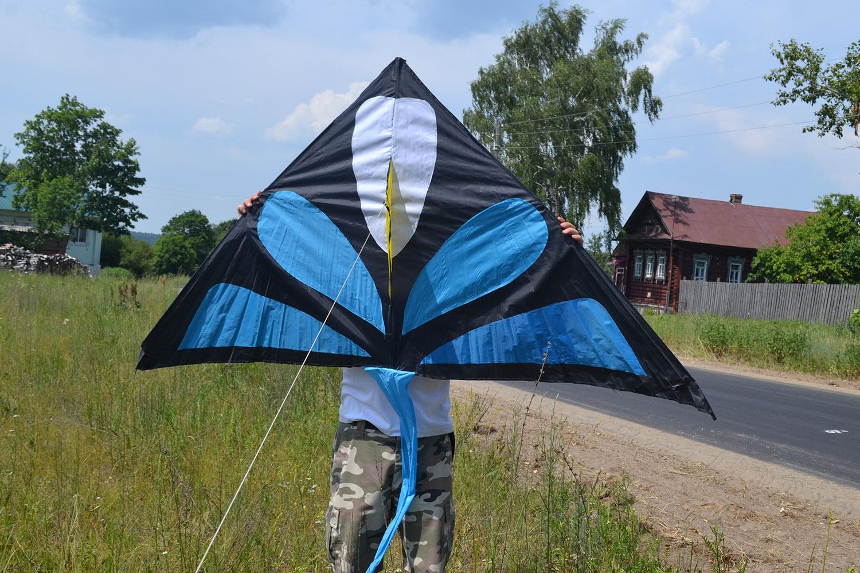 Синий Аконит, воздушный змей