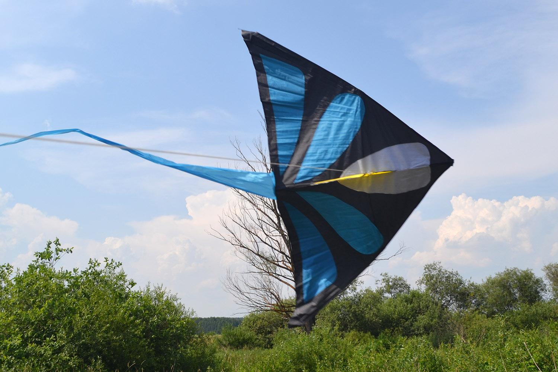 Синий Аконит, воздушный змей от fkite