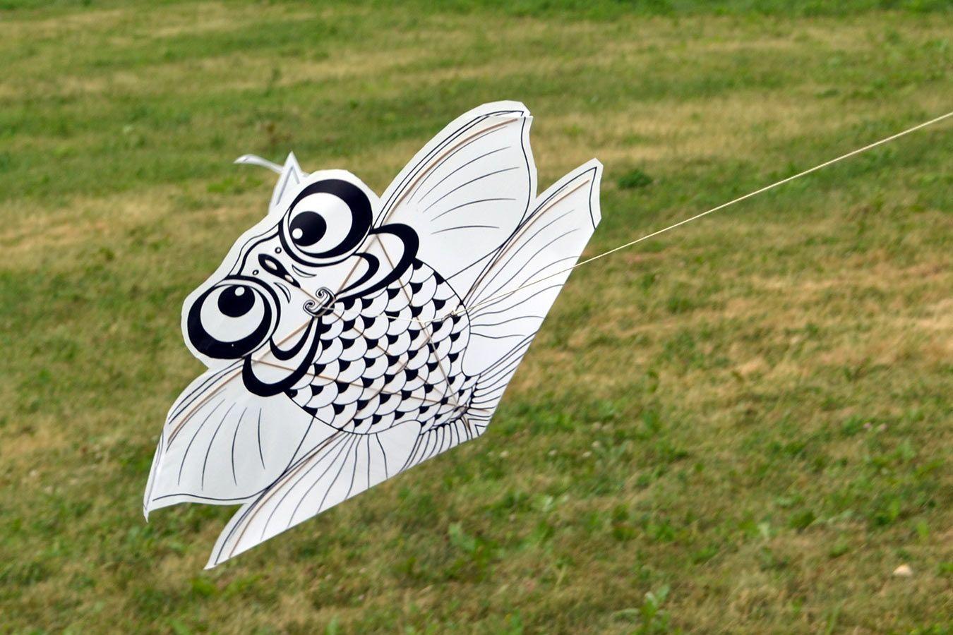 Рыбка, воздушный змей раскраска с красками купить в Москве ...