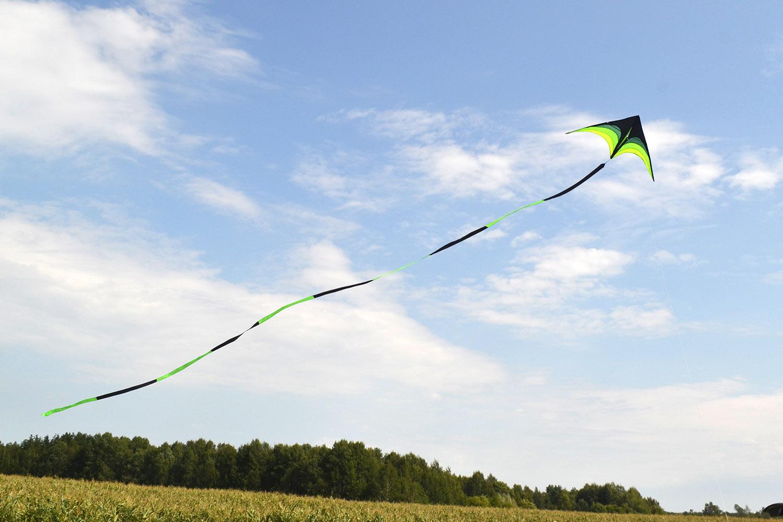 Малый Лорикет, воздушный змей от fkite