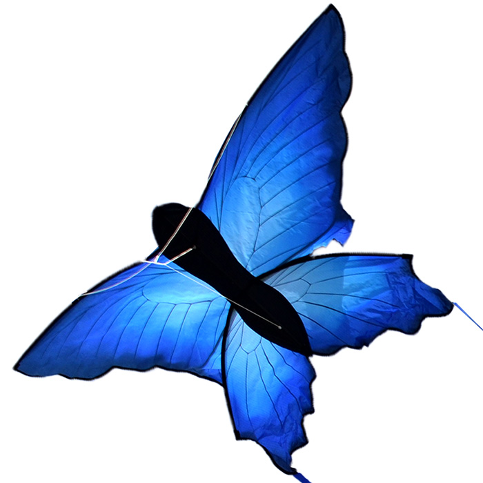 синий махаон, воздушный змей [zb577]